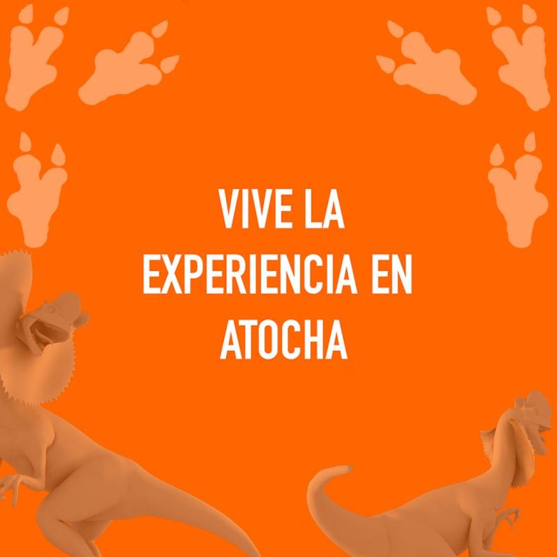 Info Dinosaurios en Atocha